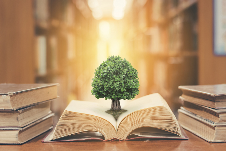 Tree on book in library